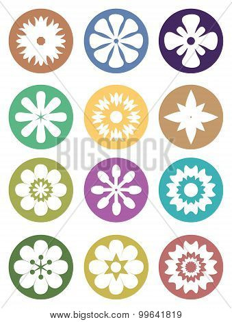 Flower In Circle Vector Icon Set