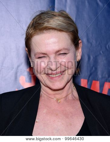 LOS ANGELES - AUG 10:  Dianne Wiest arrives to the Summer 2015 TCA's - CBS, The CW & Showtime  on August 10, 2015 in West Hollywood, CA