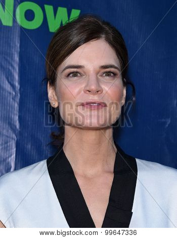LOS ANGELES - AUG 10:  Betsy Brandt arrives to the Summer 2015 TCA's - CBS, The CW & Showtime  on August 10, 2015 in West Hollywood, CA