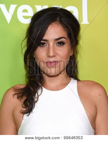 LOS ANGELES - AUG 12:  Audrey Esparza arrives to the arrives to the Summer 2015 TCA's - NBCUniversal  on August 12, 2015 in Beverly Hills, CA