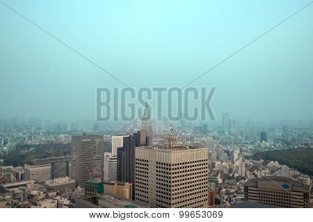 Cityscape Of Tokyo, The View From Free Observator Of Tokyo Metroplitan Government Building