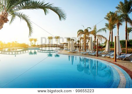 Pool and palms