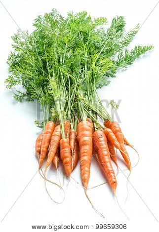 Carrots with greens on the white background.