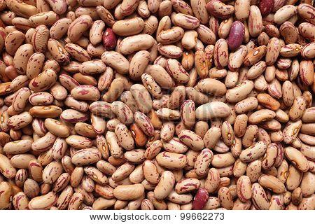 Borlotti Beans, Or Cranberry Beans Background