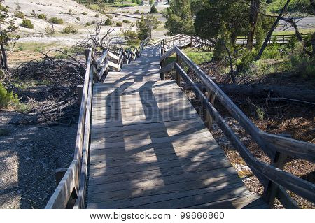 Steep Boardwalks Of Mammoth Hot Springs