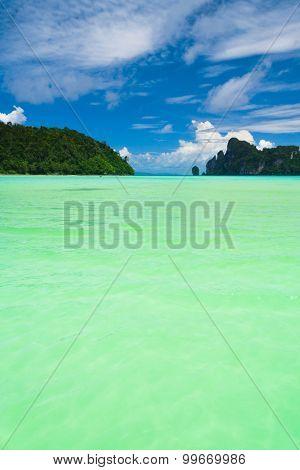 Serenity Shore Marine Scene