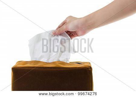 Female Hand Cauching Tissue Isolated White Background.