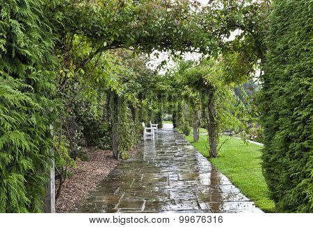 garden with white chairs on a rainy summer day