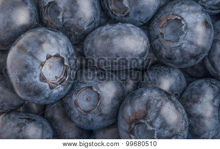 .blueberries Background