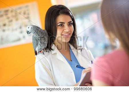Veterinarian diagnosing problems with sick African gray parrot in vet clinic