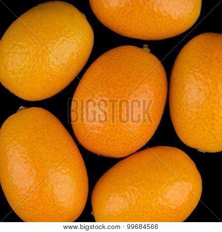 Oval Kumquats On Black Background