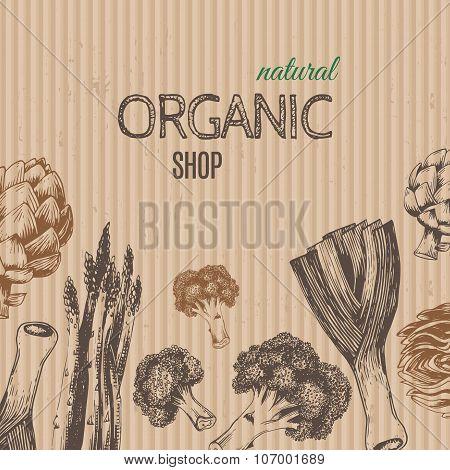 Hand-drawn vegetables on cardboard. Vector illustration.
