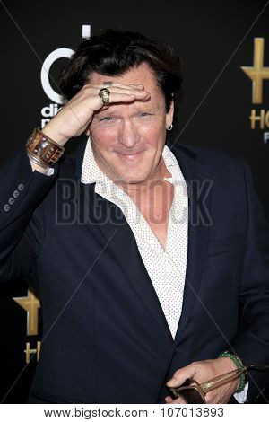 LOS ANGELES - NOV 1:  Michael Madsen at the 19th Annual Hollywood Film Awards at the Beverly Hilton Hotel on November 1, 2015 in Beverly Hills, CA