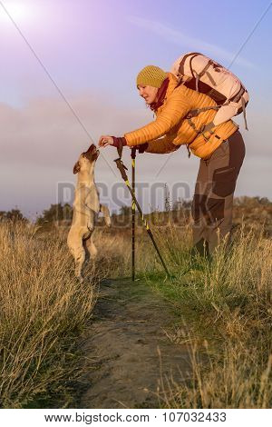 Female hiker and dog on pathway