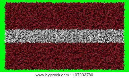 flag of Latvia, Latvian flag made from leaves