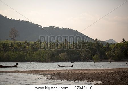 Boating On The River In Jungle