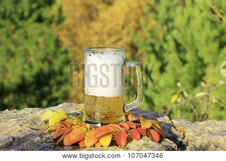 Beer Mug With Frothy Beer Is Standing On Cliff Among Autumn Leaves Of Mountain Ash