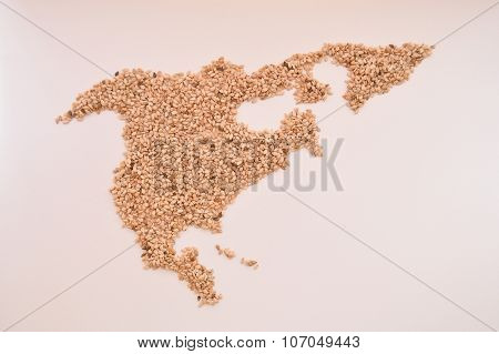 Sesame seeds in the shape of North America
