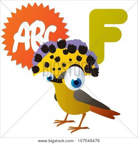 vector cartoon funny animals alphabet: F is for Flycatcher