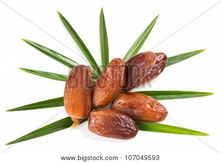Dates And Leaf