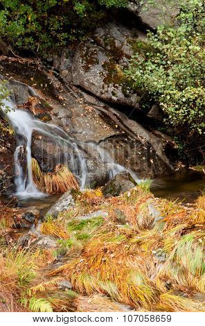 Small waterfall in the forest during autumn