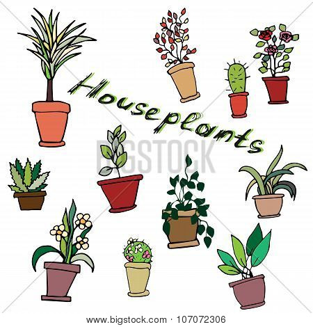 Bright vector set of house plants in pots with an inscription.