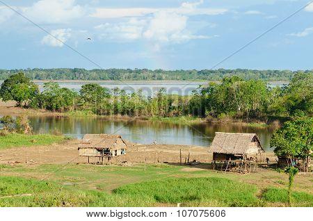 Peruvian Amazonas
