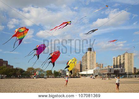 NEW YORK, USA - SEP 08, 2014: Kite flying on the beach near the New York Aquarium in Coney Island