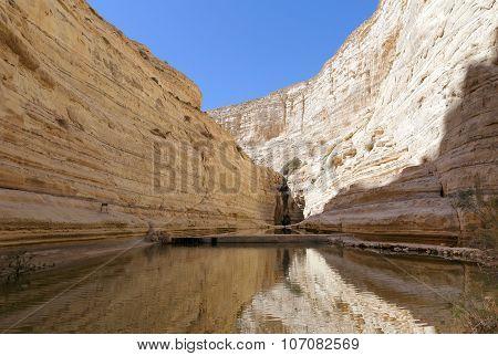 Avdat Canyon