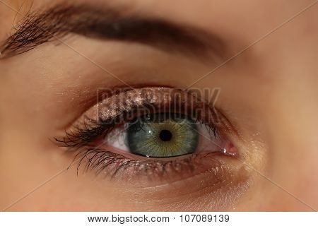 Human Eye Closeup