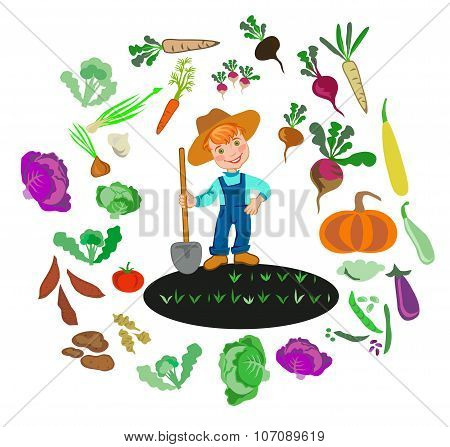 Cultivation Of Vegetables.