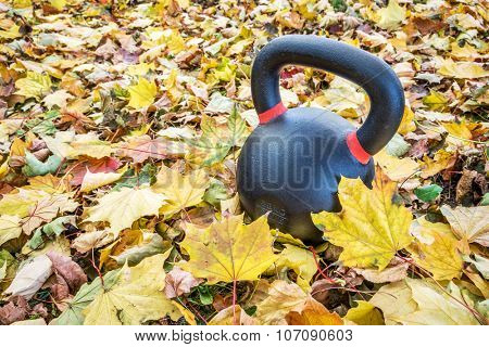 heavy exercise kettlebell in maple leaves - outdoor fitness concept