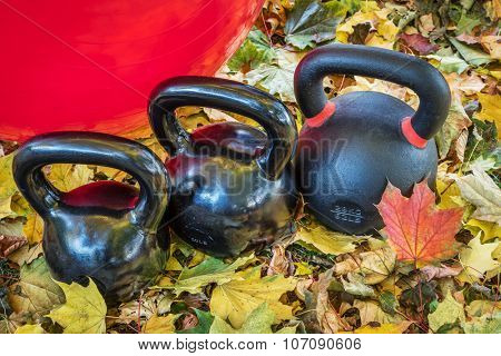 black iron exercise kettlebells and Swiss ball with maple leaves - outdoor  fitness concept