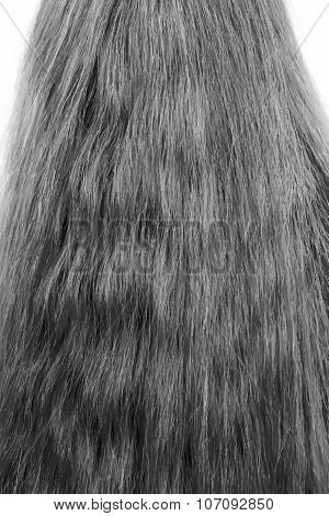 Female Hair