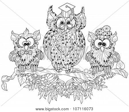 Old Owl  on tree branch with small owls.