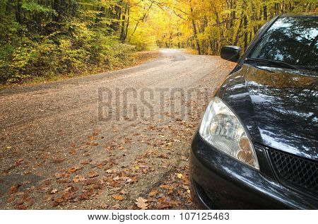 Car and road in autumn forest.