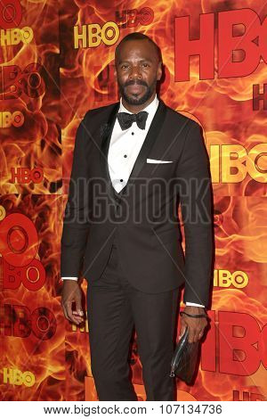 LOS ANGELES - SEP 20:  Colman Domingo at the HBO Primetime Emmy Awards After-Party at the Pacific Design Center on September 20, 2015 in West Hollywood, CA