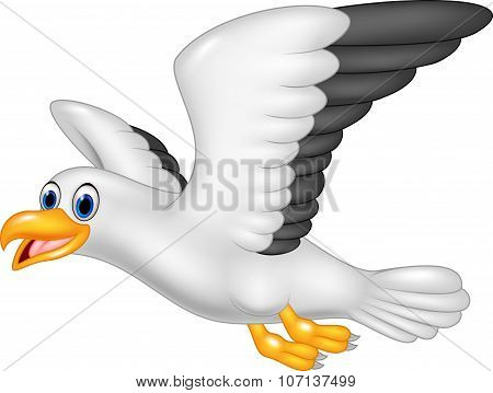Cartoon flying seagull isolated on white background