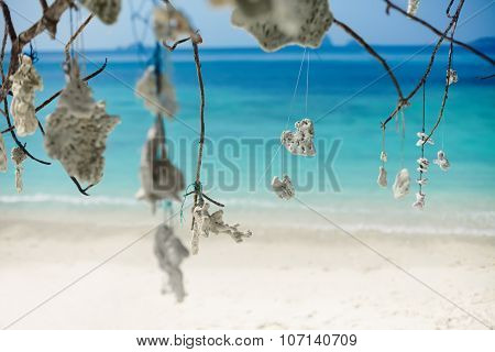 Coral Decoration On The Tree On The Beach
