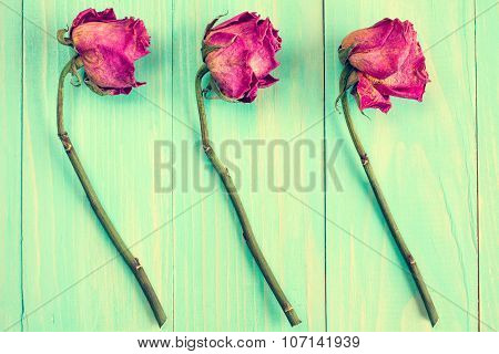 Old Roses On Blue Wooden Background