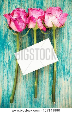 Dry Roses And Blank Greeting Card