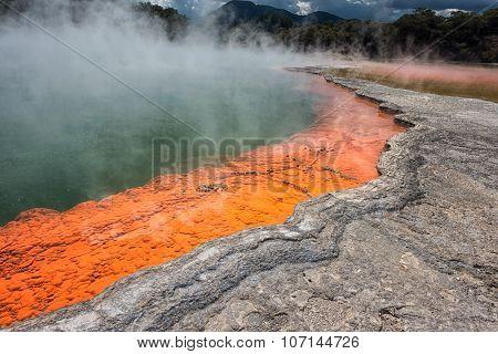 Champagne Pool In Wai-o-tapu Geothermal Wonderland, Rotorua, New Zealand