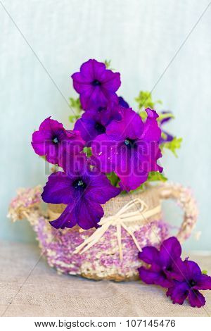 Violet Petunia flowers in a wattled basket
