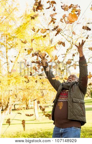 Happy old man throwing leaves around in parkland