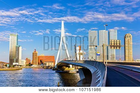 View Of Erasmus Bridge In Rotterdam, Netherlands