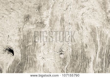 Texture Of A Dirty Surface An Old Tree