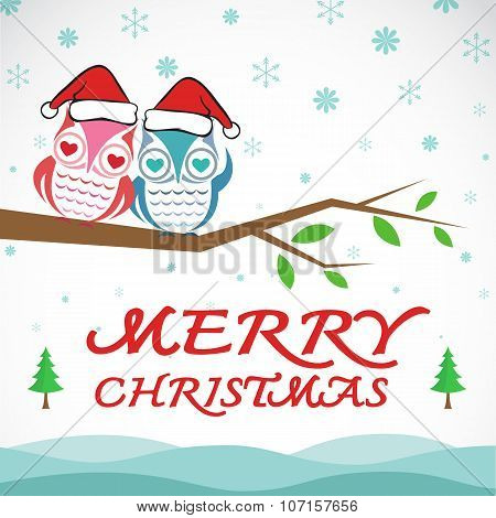 Vector Merry Christmas Greeting Owl Card On White Background