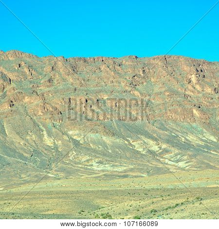 Bush  In    Valley  Morocco     Africa The Atlas Dry Mountain