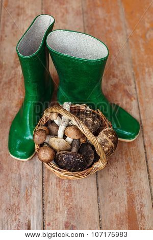 Green rubber boots and a basket full of mushrooms on a wooden background.