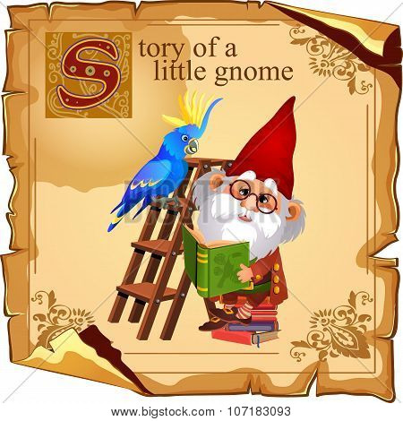 Cute gnome with parrot reading a book